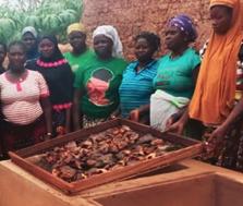Flera kvinnor i en produktionsanläggning för att förädla fisk, tillsammans med läraren
