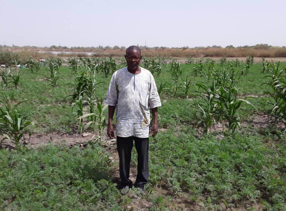 Emmanuel Idrissa Kongo vid sin majsodling